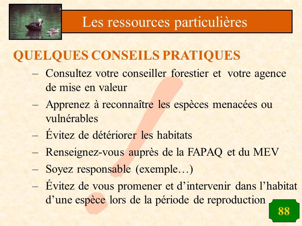 88 QUELQUES CONSEILS PRATIQUES –Consultez votre conseiller forestier et votre agence de mise en valeur –Apprenez à reconnaître les espèces menacées ou
