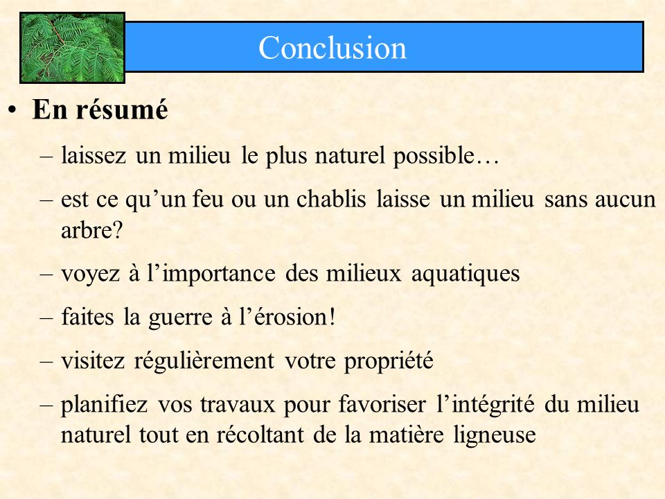 En résumé –laissez un milieu le plus naturel possible… –est ce quun feu ou un chablis laisse un milieu sans aucun arbre? –voyez à limportance des mili