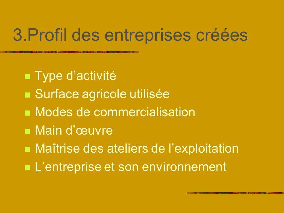 3.Profil des entreprises créées Type dactivité Surface agricole utilisée Modes de commercialisation Main dœuvre Maîtrise des ateliers de lexploitation Lentreprise et son environnement