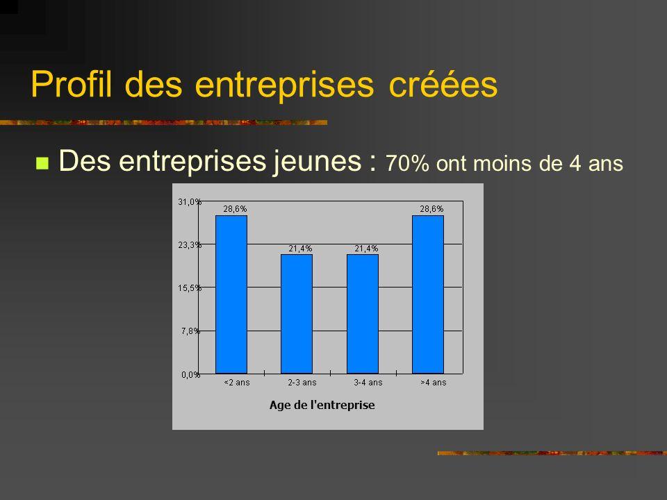 Profil des entreprises créées Des entreprises jeunes : 70% ont moins de 4 ans Age de l entreprise