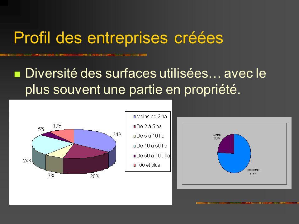 Profil des entreprises créées Diversité des surfaces utilisées… avec le plus souvent une partie en propriété.