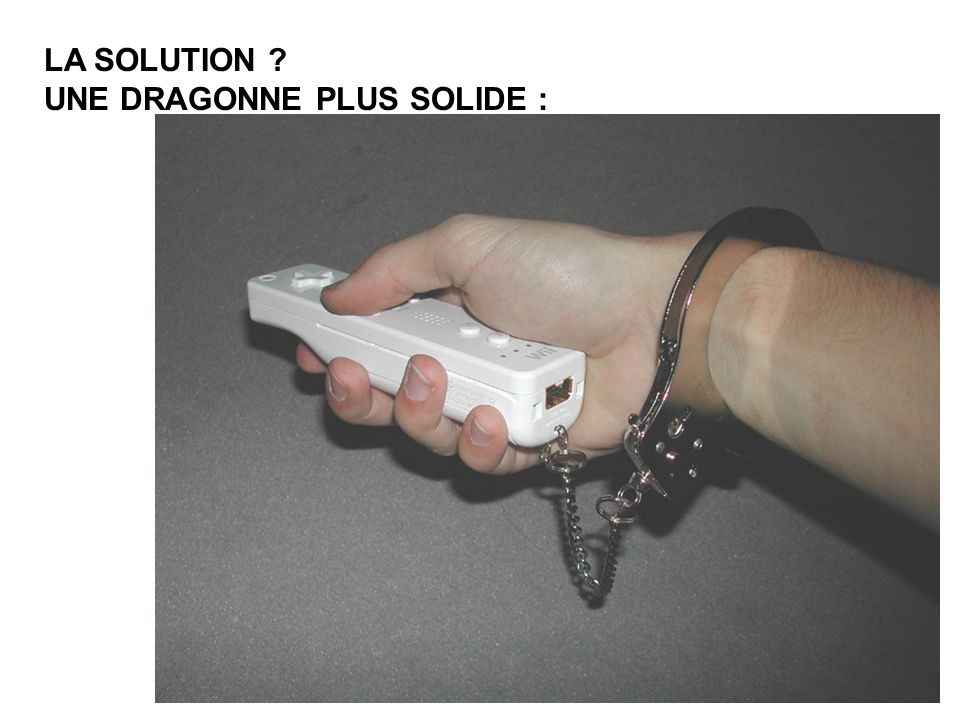 LA SOLUTION UNE DRAGONNE PLUS SOLIDE :