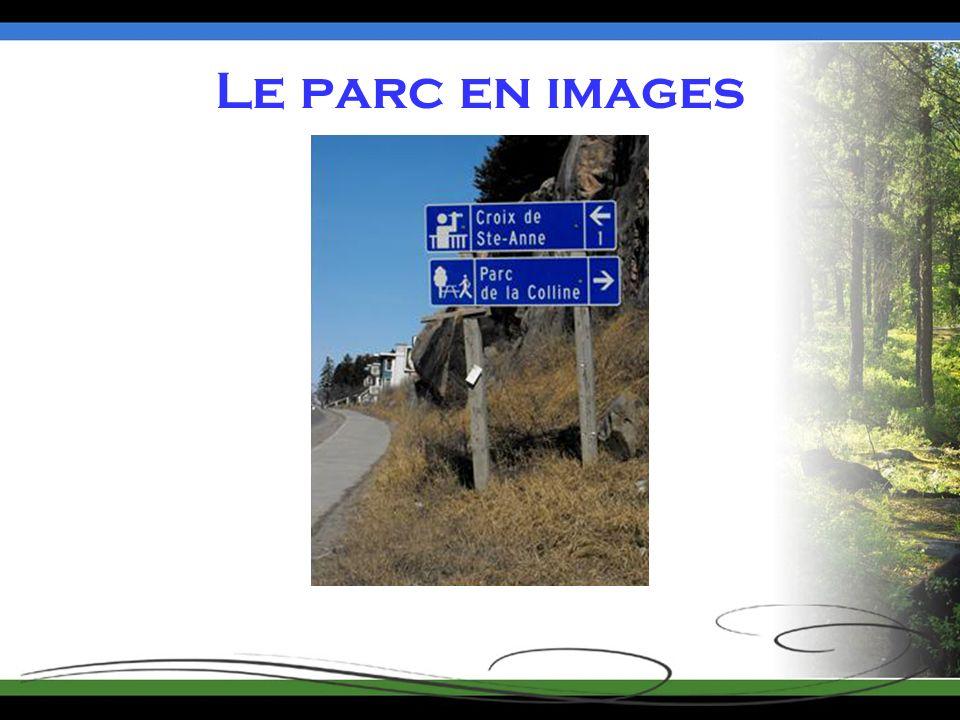 Le parc en images