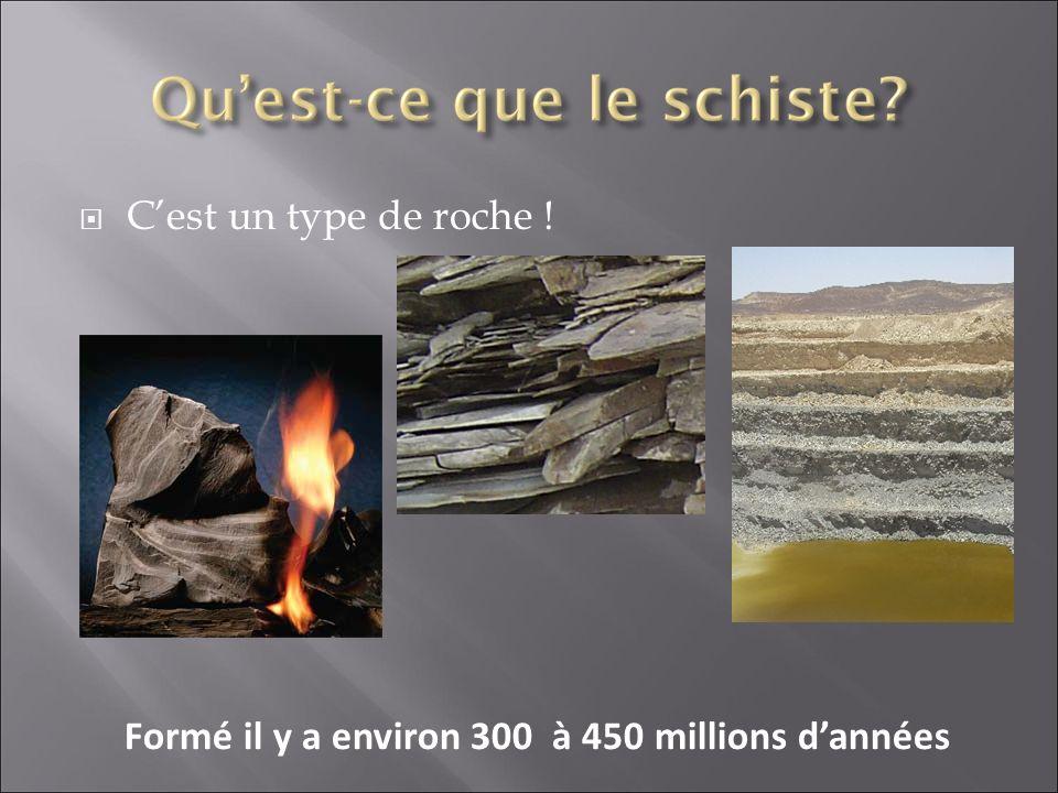 Cest un type de roche ! Formé il y a environ 300 à 450 millions dannées