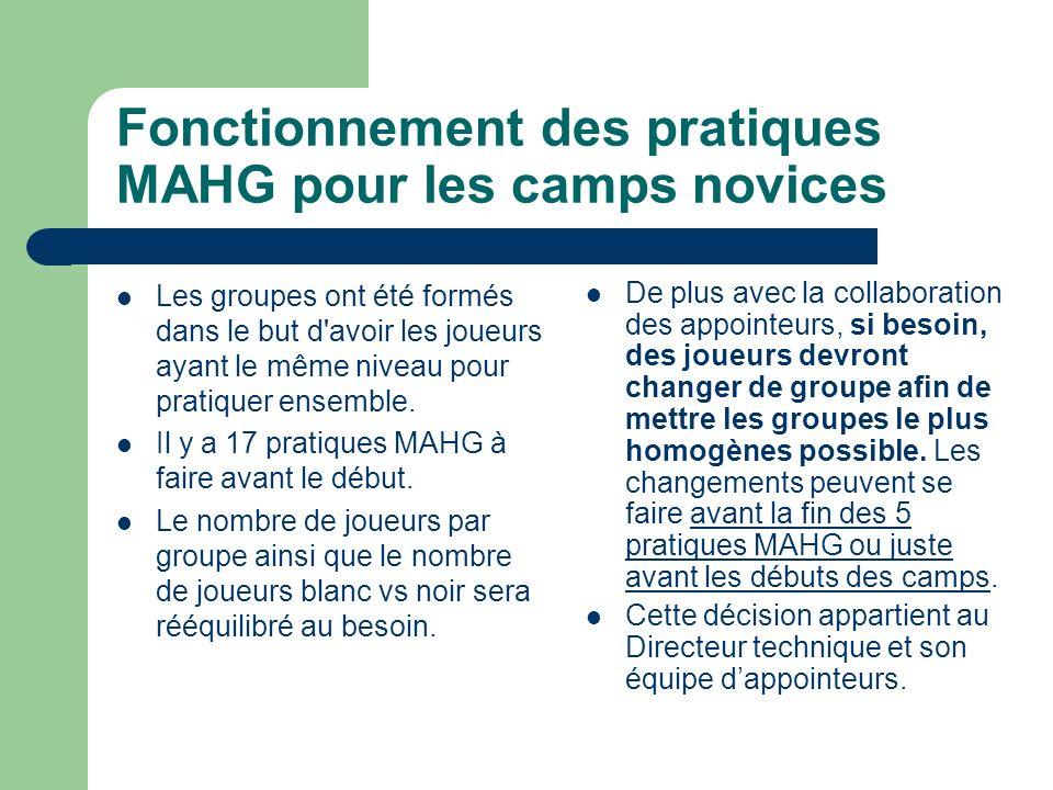 Fonctionnement des pratiques MAHG pour les camps novices Les groupes ont été formés dans le but d avoir les joueurs ayant le même niveau pour pratiquer ensemble.