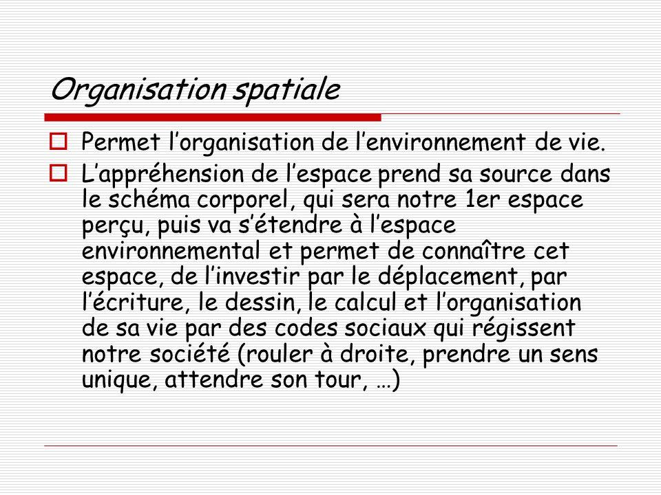 Organisation spatiale Permet lorganisation de lenvironnement de vie.