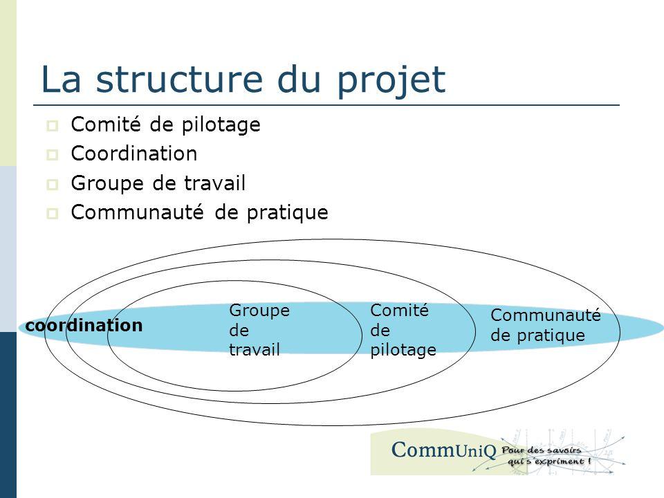 La structure du projet Comité de pilotage Coordination Groupe de travail Communauté de pratique coordination Groupe de travail Comité de pilotage Communauté de pratique