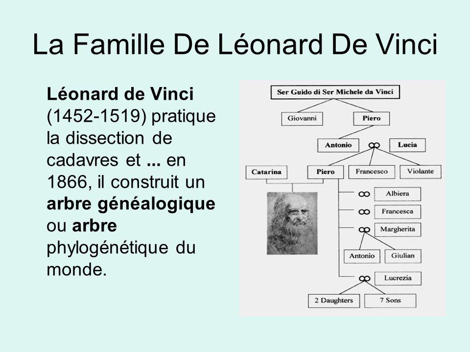 La Famille De Léonard De Vinci Léonard de Vinci (1452-1519) pratique la dissection de cadavres et...