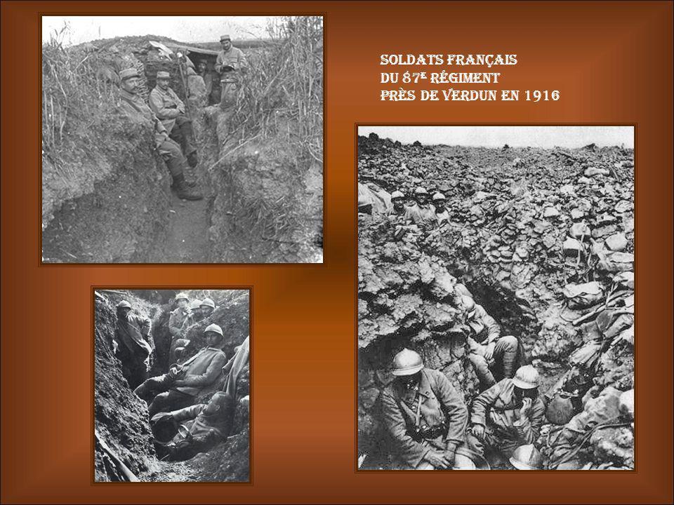 Abri dune tranchée Crapouillot Ecopage de leau dans la tranchée Verdun une pluie d'obus