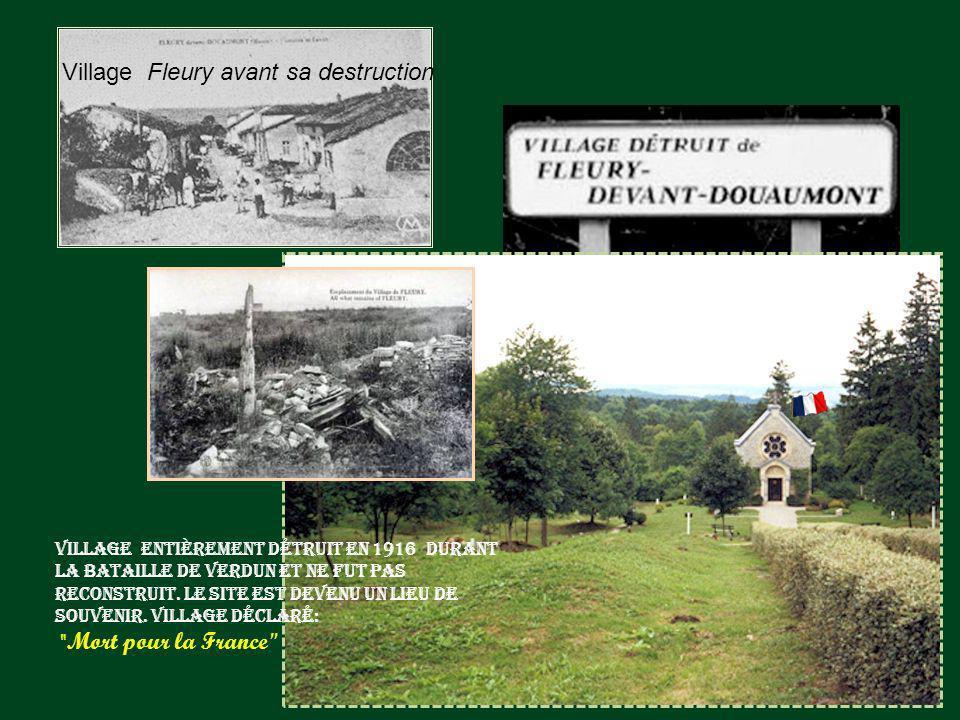 Pièce en action à Fleury devant Douaumont Dans Fleury