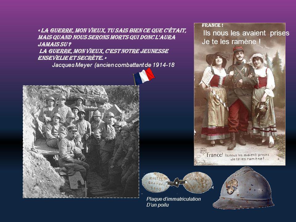 Monument aux mort de Verdun, Il représente les différents corps de l'armée française La tranchée des baïonnettes A Verdun, le champ de bataille de 191