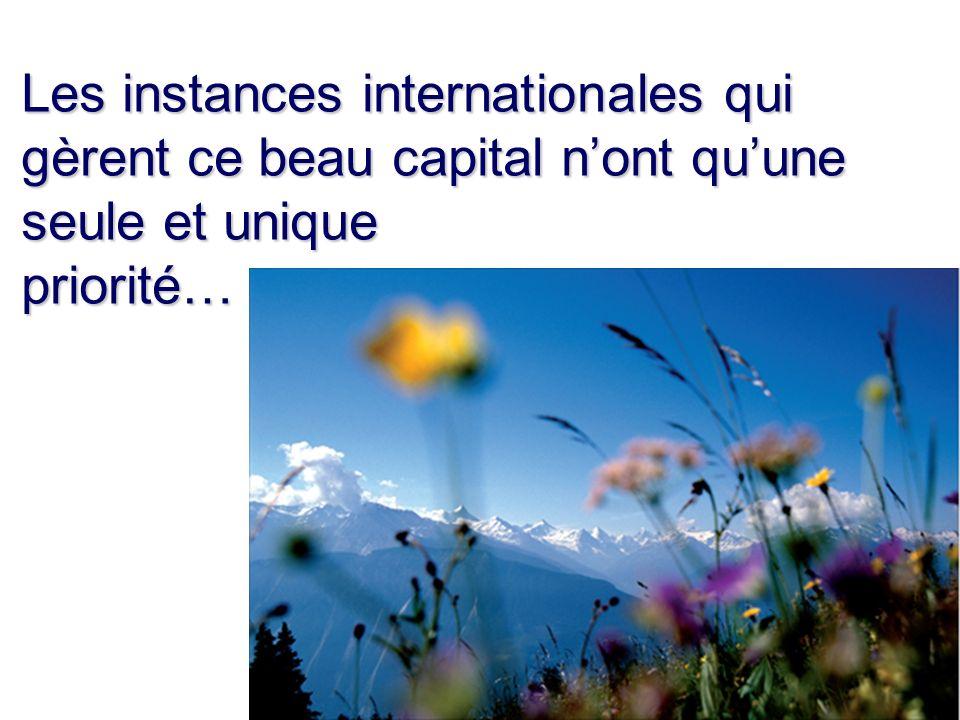 Les instances internationales qui gèrent ce beau capital nont quune seule et unique priorité…