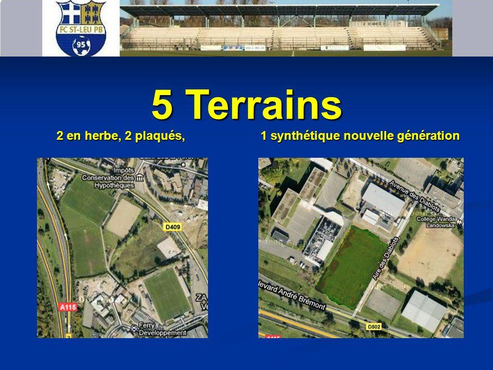 5 Terrains 2 en herbe, 2 plaqués, 1 synthétique nouvelle génération 2 en herbe, 2 plaqués, 1 synthétique nouvelle génération