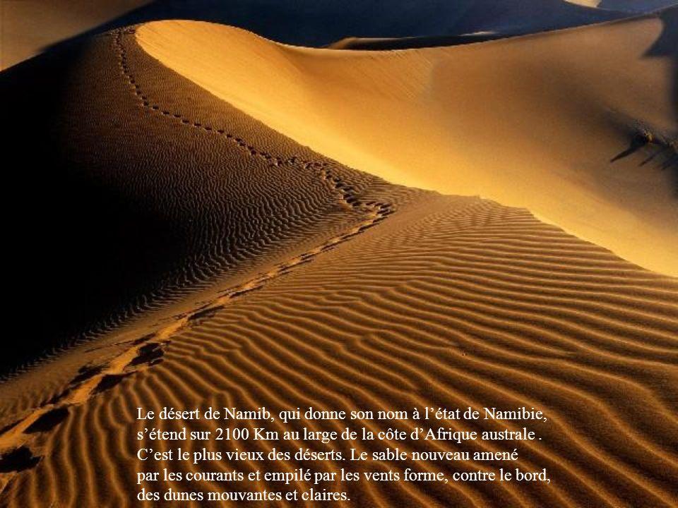 Le fond de cet immense cratère effondré (ou caldera), de la réserve naturelle de Krokotski en Russie, est tapissé dune végétation rare qui cache un sol instable.