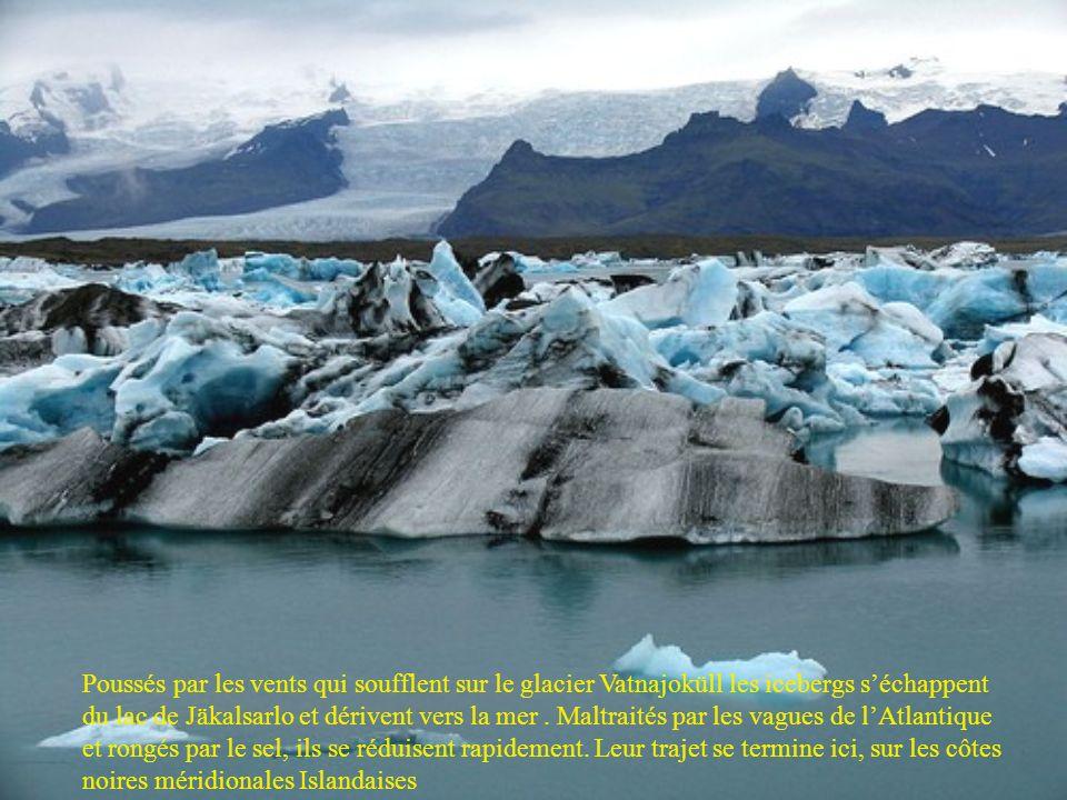 Poussés par les vents qui soufflent sur le glacier Vatnajoküll les icebergs séchappent du lac de Jäkalsarlo et dérivent vers la mer.