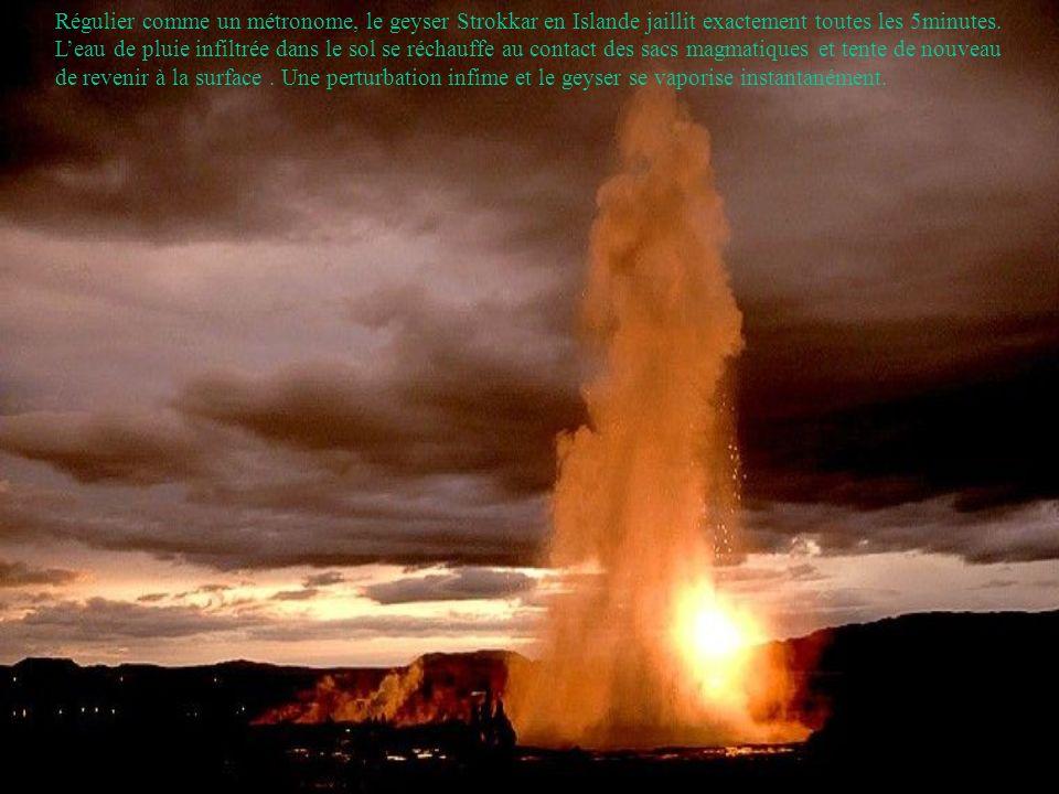 Régulier comme un métronome, le geyser Strokkar en Islande jaillit exactement toutes les 5minutes.