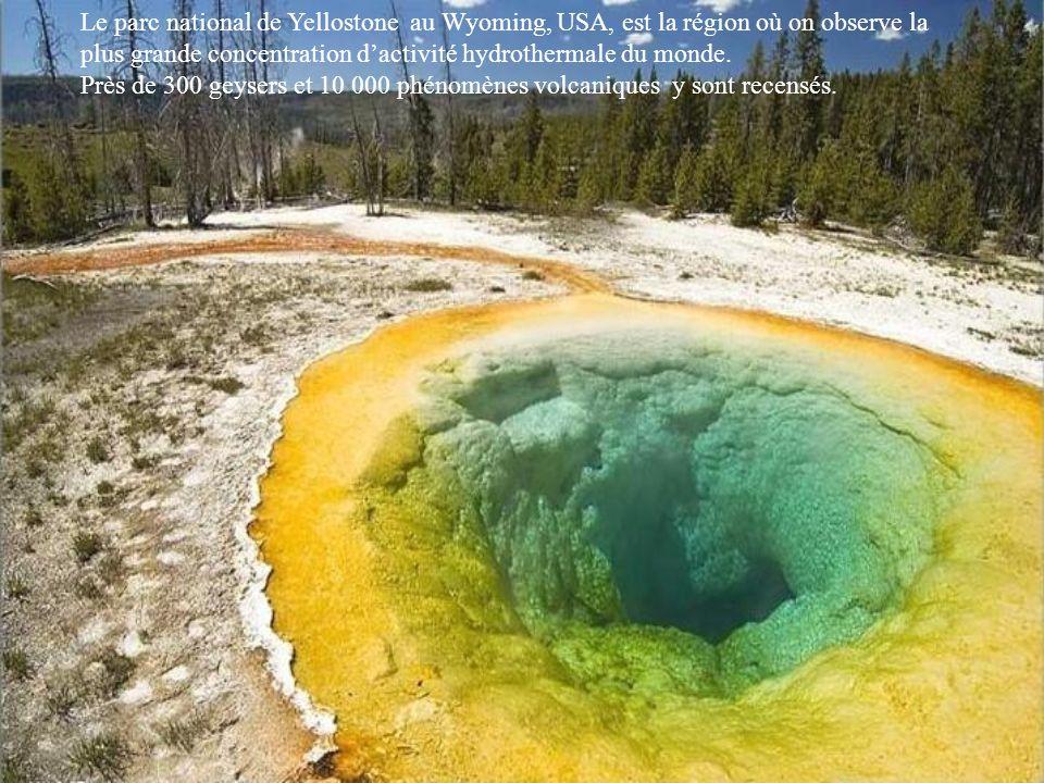 Le parc national de Yellostone au Wyoming, USA, est la région où on observe la plus grande concentration dactivité hydrothermale du monde.