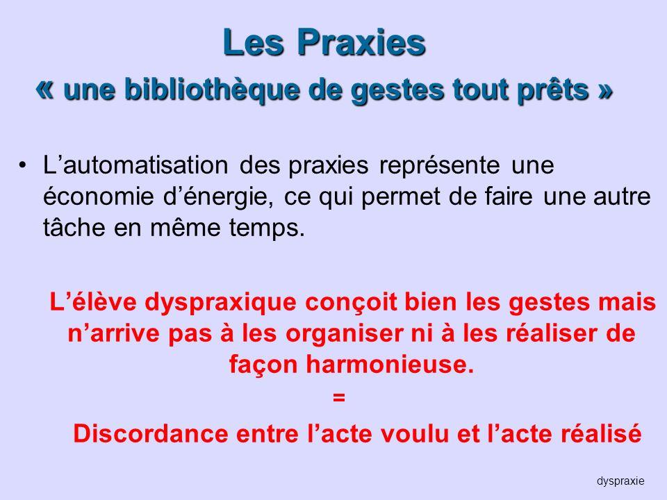 Les Praxies « une bibliothèque de gestes tout prêts » Lautomatisation des praxies représente une économie dénergie, ce qui permet de faire une autre t