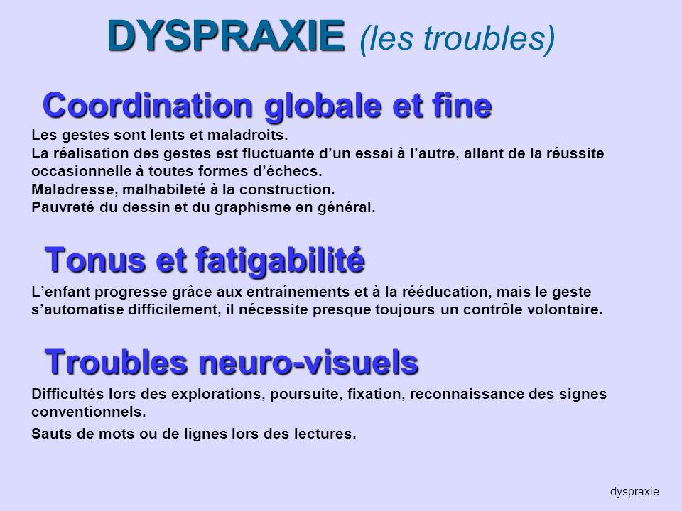DYSPRAXIE DYSPRAXIE (les troubles) Coordination globale et fine Les gestes sont lents et maladroits. La réalisation des gestes est fluctuante dun essa