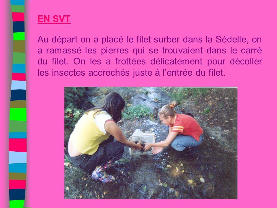 EN SVT Au départ on a placé le filet surber dans la Sédelle, on a ramassé les pierres qui se trouvaient dans le carré du filet. On les a frottées déli