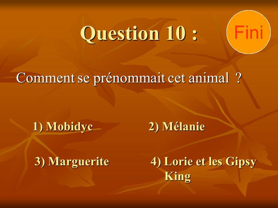 Question 10 : Comment se prénommait cet animal ? 1) Mobidyc 3) Marguerite 2) Mélanie 4) Lorie et les Gipsy King 30292827262524232221201918171615141312