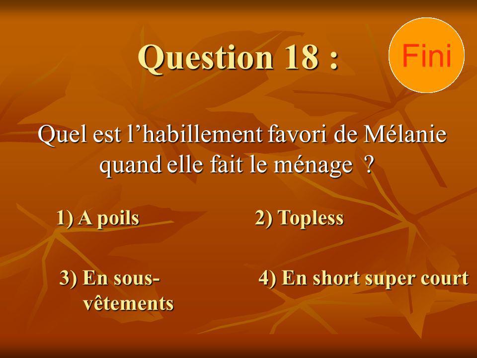 Question 18 : Quel est lhabillement favori de Mélanie quand elle fait le ménage ? 1) A poils 3) En sous- vêtements 2) Topless 4) En short super court