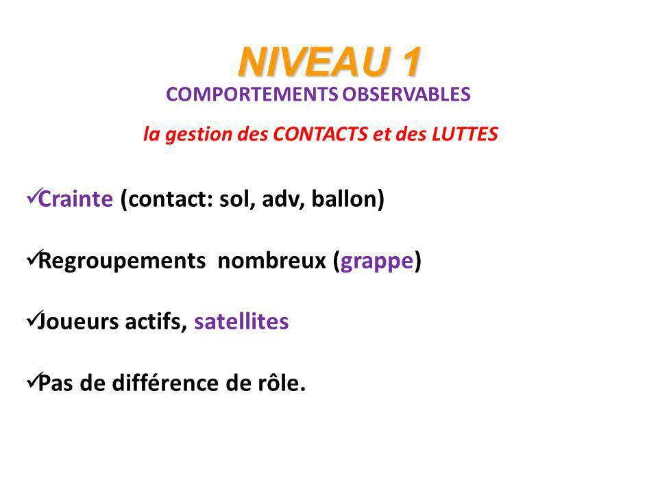 NIVEAU 1 COMPORTEMENTS OBSERVABLES la gestion des CONTACTS et des LUTTES Crainte (contact: sol, adv, ballon) Regroupements nombreux (grappe) Joueurs a
