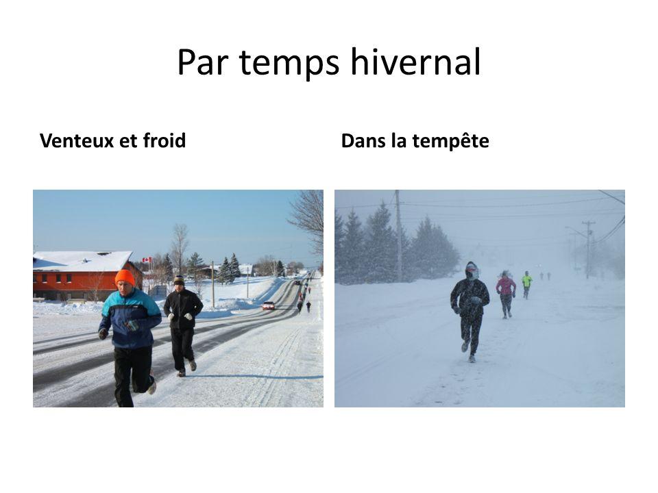 Par temps hivernal Venteux et froidDans la tempête