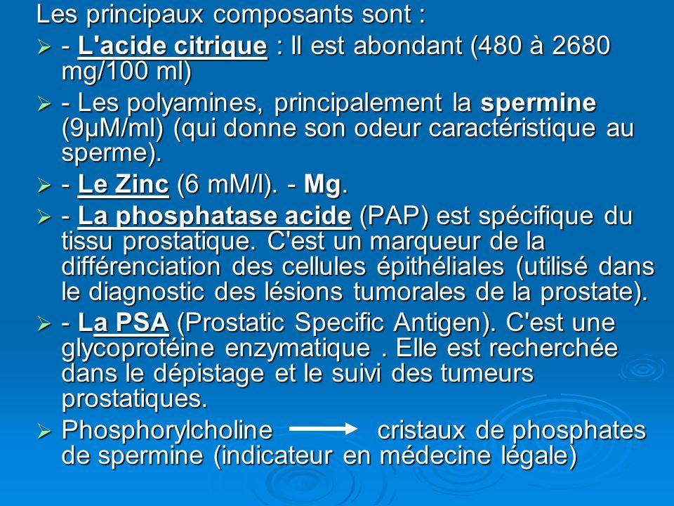 Les principaux composants sont : - L acide citrique : Il est abondant (480 à 2680 mg/100 ml) - L acide citrique : Il est abondant (480 à 2680 mg/100 ml) - Les polyamines, principalement la spermine (9µM/ml) (qui donne son odeur caractéristique au sperme).
