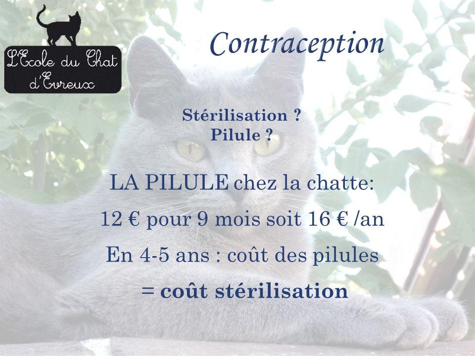 LA PILULE chez la chatte: 12 pour 9 mois soit 16 /an En 4-5 ans : coût des pilules = c oût stérilisation Stérilisation ? Pilule ?