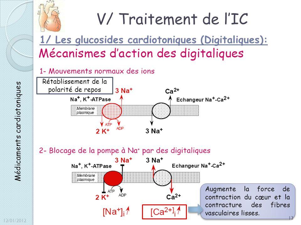 V/ Traitement de lIC 1/ Les glucosides cardiotoniques (Digitaliques): Médicaments cardiotoniques Rétablissement de la polarité de repos Augmente la fo