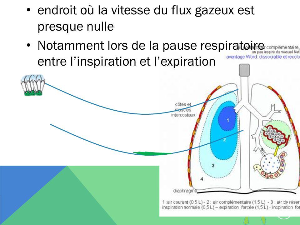 endroit où la vitesse du flux gazeux est presque nulle Notamment lors de la pause respiratoire entre linspiration et lexpiration 21