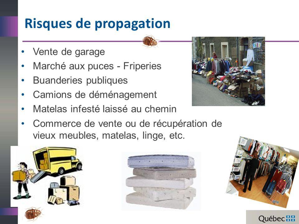 Vente de garage Marché aux puces - Friperies Buanderies publiques Camions de déménagement Matelas infesté laissé au chemin Commerce de vente ou de récupération de vieux meubles, matelas, linge, etc.
