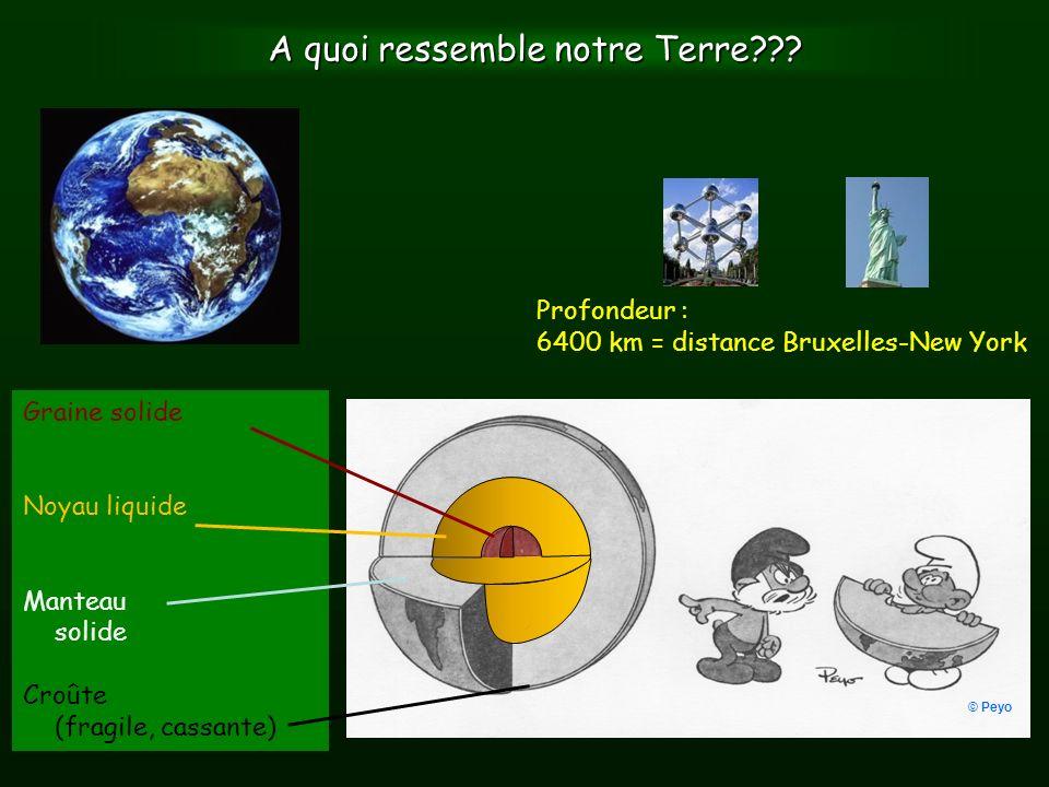 Réseau sismique belge www.seismologie.be Uccle