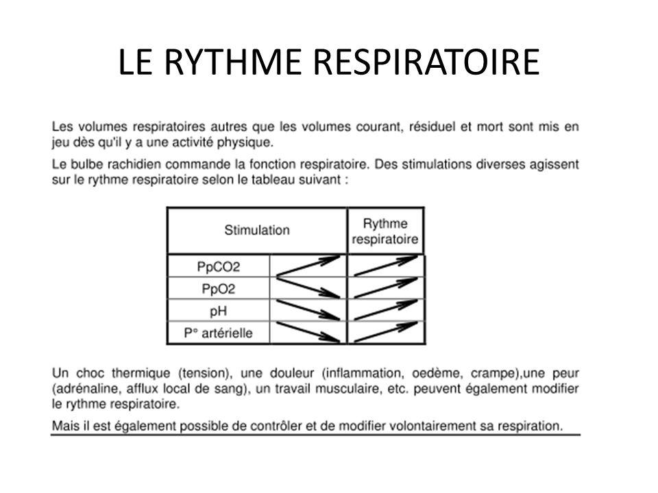 LE RYTHME RESPIRATOIRE