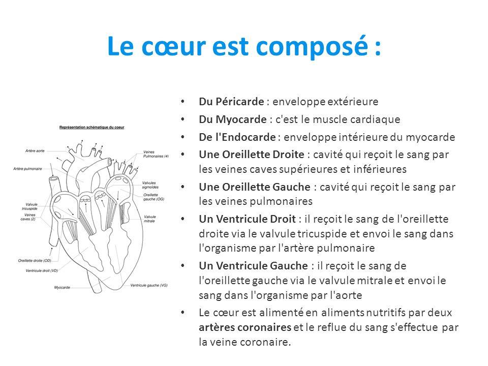 Le cœur est composé : Du Péricarde : enveloppe extérieure Du Myocarde : c est le muscle cardiaque De l Endocarde : enveloppe intérieure du myocarde Une Oreillette Droite : cavité qui reçoit le sang par les veines caves supérieures et inférieures Une Oreillette Gauche : cavité qui reçoit le sang par les veines pulmonaires Un Ventricule Droit : il reçoit le sang de l oreillette droite via le valvule tricuspide et envoi le sang dans l organisme par l artère pulmonaire Un Ventricule Gauche : il reçoit le sang de l oreillette gauche via le valvule mitrale et envoi le sang dans l organisme par l aorte Le cœur est alimenté en aliments nutritifs par deux artères coronaires et le reflue du sang s effectue par la veine coronaire.