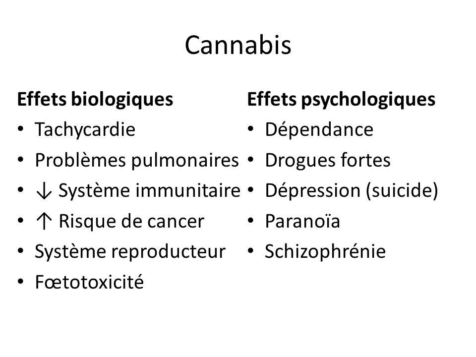 Cannabis Effets biologiques Tachycardie Problèmes pulmonaires Système immunitaire Risque de cancer Système reproducteur Fœtotoxicité Effets psychologi