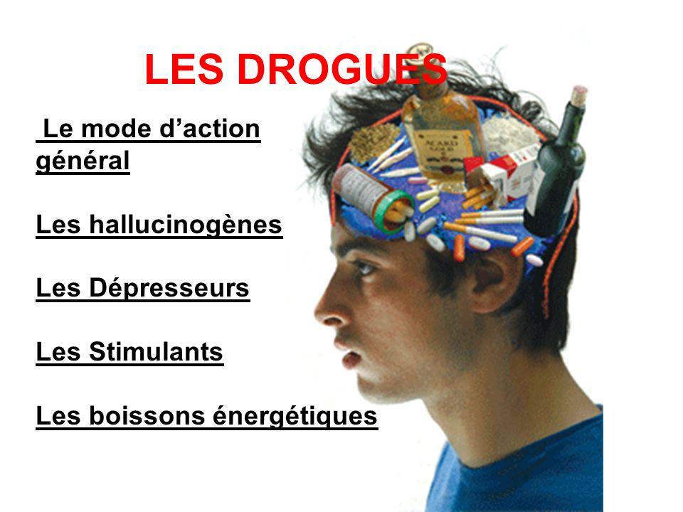 Le mode daction général Les hallucinogènes Les Dépresseurs Les Stimulants Les boissons énergétiques LES DROGUES