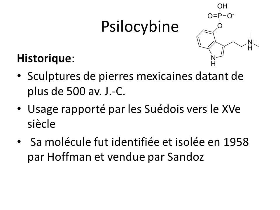 Psilocybine Historique: Sculptures de pierres mexicaines datant de plus de 500 av. J.-C. Usage rapporté par les Suédois vers le XVe siècle Sa molécule