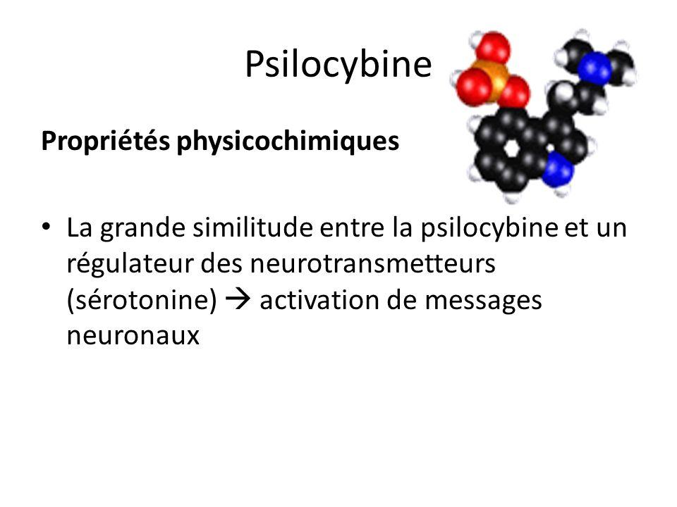 Psilocybine Propriétés physicochimiques La grande similitude entre la psilocybine et un régulateur des neurotransmetteurs (sérotonine) activation de m