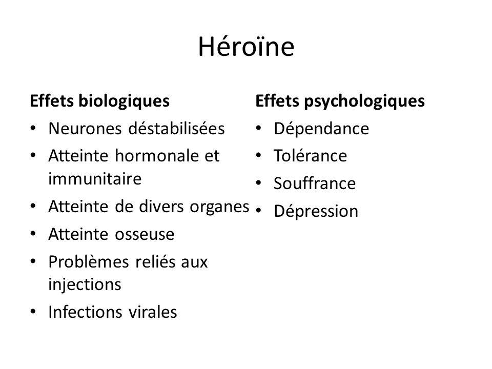 Héroïne Effets biologiques Neurones déstabilisées Atteinte hormonale et immunitaire Atteinte de divers organes Atteinte osseuse Problèmes reliés aux i