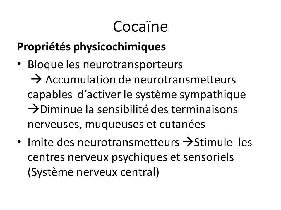 Cocaïne Propriétés physicochimiques Bloque les neurotransporteurs Accumulation de neurotransmetteurs capables dactiver le système sympathique Diminue