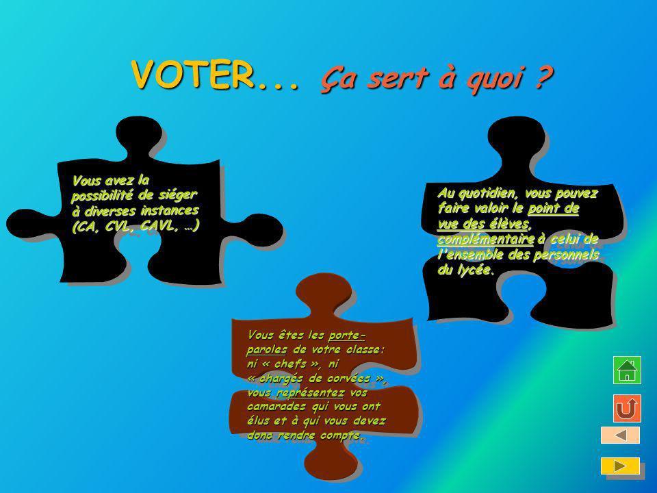 VOTER... VOTER... Ça sert à quoi ? Vous avez la possibilité de siéger à diverses instances (CA, CVL, CAVL, …) Vous avez la possibilité de siéger à div