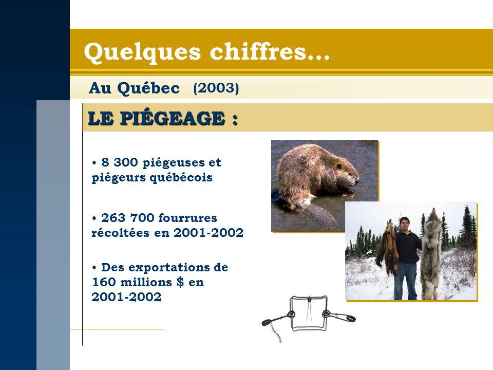 Quelques chiffres… Au Québec LE PIÉGEAGE : 8 300 piégeuses et piégeurs québécois (2003) Des exportations de 160 millions $ en 2001-2002 263 700 fourrures récoltées en 2001-2002