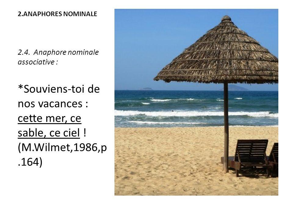 2.ANAPHORES NOMINALE 2.4. Anaphore nominale associative : *Souviens-toi de nos vacances : cette mer, ce sable, ce ciel ! (M.Wilmet,1986,p.164)