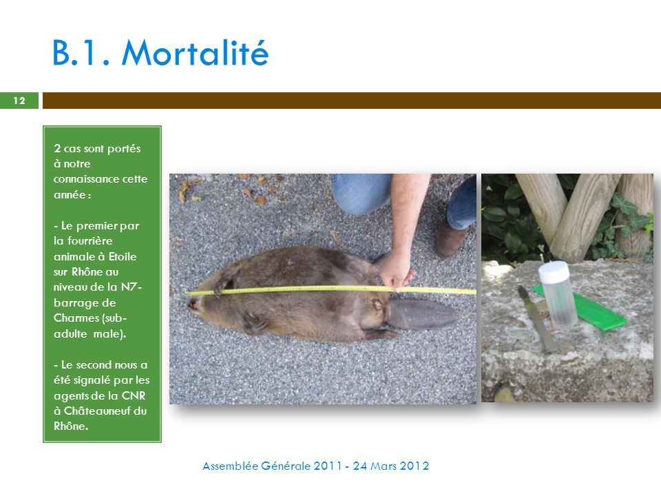 B.1. Mortalité Assemblée Générale 2011 - 24 Mars 2012 12 2 cas sont portés à notre connaissance cette année : - Le premier par la fourrière animale à