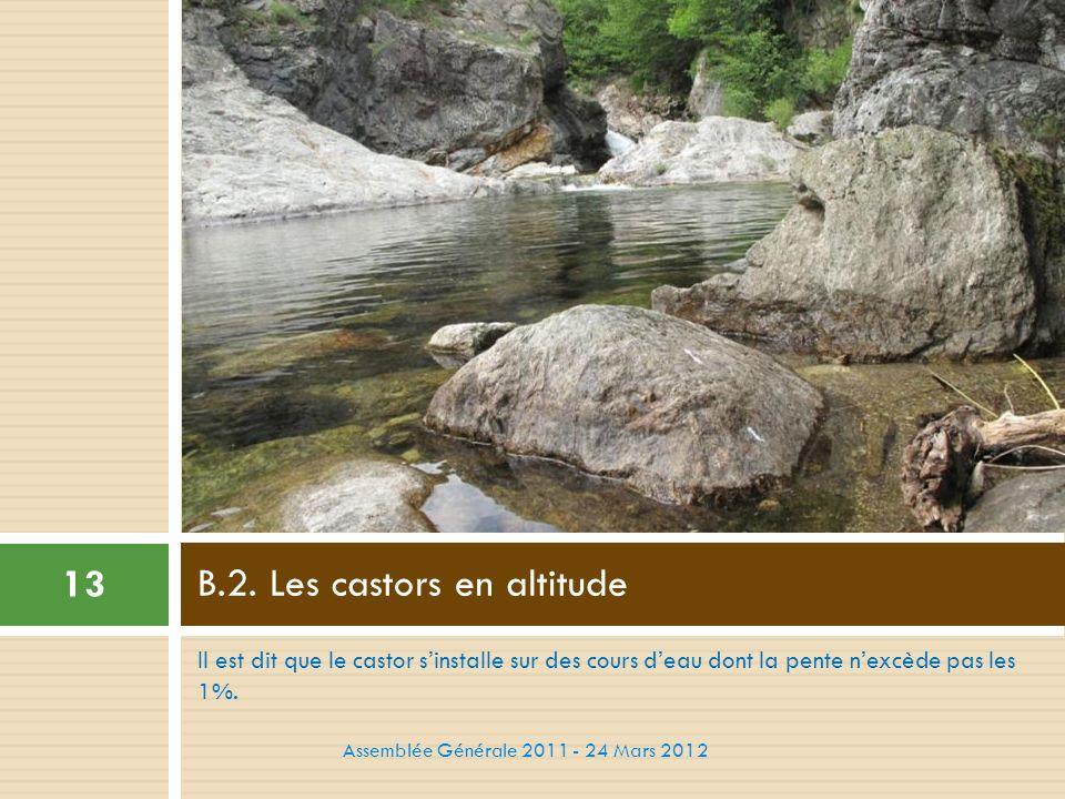 Il est dit que le castor sinstalle sur des cours deau dont la pente nexcède pas les 1%. B.2. Les castors en altitude 13 Assemblée Générale 2011 - 24 M