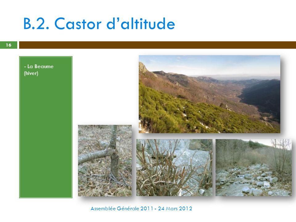 B.2. Castor daltitude Assemblée Générale 2011 - 24 Mars 2012 16 - La Beaume (hiver)