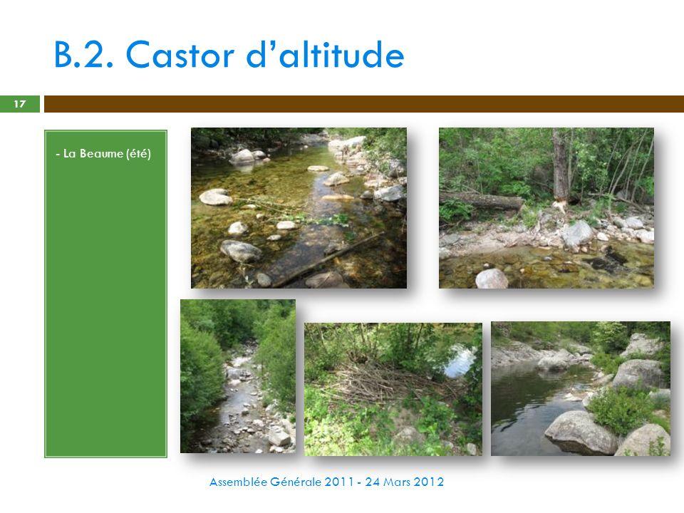 B.2. Castor daltitude Assemblée Générale 2011 - 24 Mars 2012 17 - La Beaume (été)