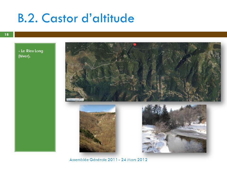 B.2. Castor daltitude Assemblée Générale 2011 - 24 Mars 2012 18 - Le Rieu Long (hiver).